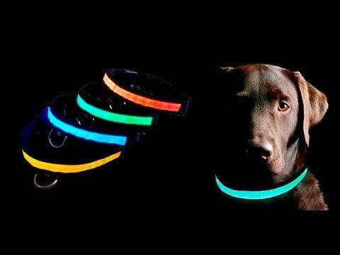 Ошейник LED светящийся узкий для небольших собак и кошек 0.5 м