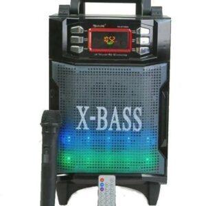 Портативная колонка - радиоприемник GOLON RX-2900 с беспроводным микрофоном